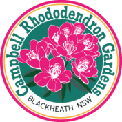 Campbell Rhododendron Gardens, Blackheath